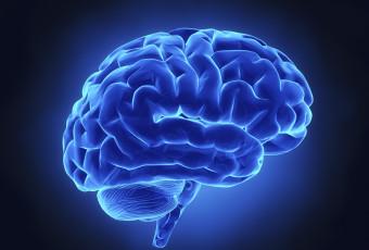 Mind, memory, mood