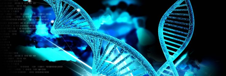 DNA_letters